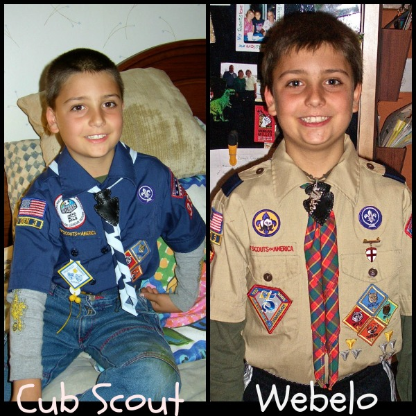 Cub&WebeloTitle