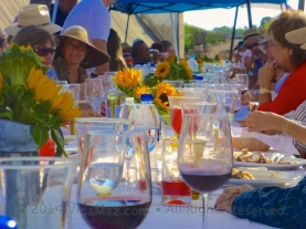 View of the long table