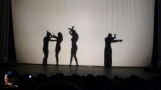 Dance performance conducted in silouette