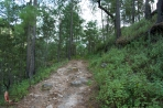 One of the hiking or jeep trails