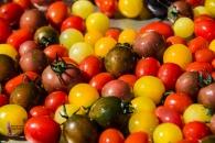 Roasting tomato medley