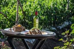 Food and wine in a field