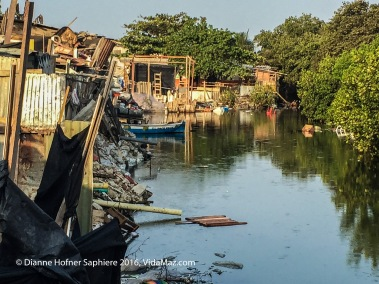 """Yes, poor people actually fish in this filthy """"laguna"""" in Cartagena."""