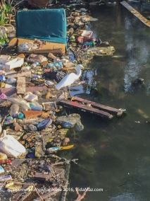 "Yes, poor people actually fish in this filthy ""laguna"" in Cartagena."