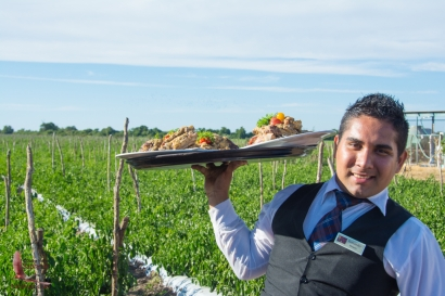 Waiter brings yet another delicious course