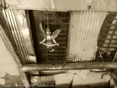 Octavio's guardian angel