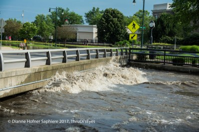 Normally the water flows under this bridge, with several feet of clearance...